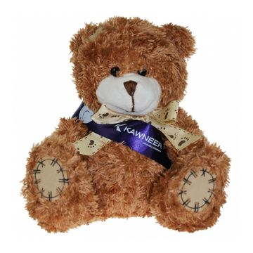 Cinnamon Paw Bear with Sash
