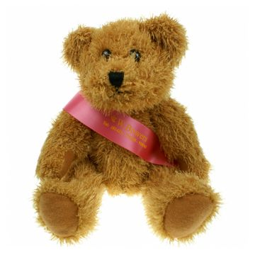 Sparkie Bears with Sash