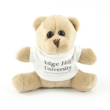 10cm Mini Bear with T-Shirt
